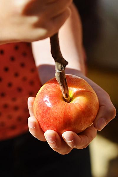 καραμελωμένα μήλα 4 e-mama