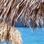 6 πολύτιμες συμβουλές για δροσερό σπίτι το καλοκαίρι