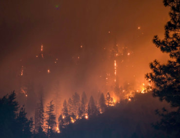 Πώς να προστατευτούμε από τις δασικές πυρκαγιές